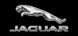 Jaguar - Zdjęcie